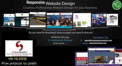 Website Deisgn Tanzania