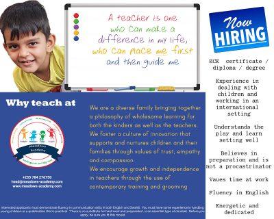 Meadows Academy Teacher vacancy