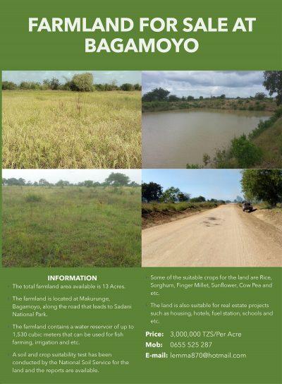 Farmland-for-Sale-at-Bagamoyo